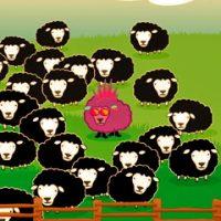 Toamna se numără oile